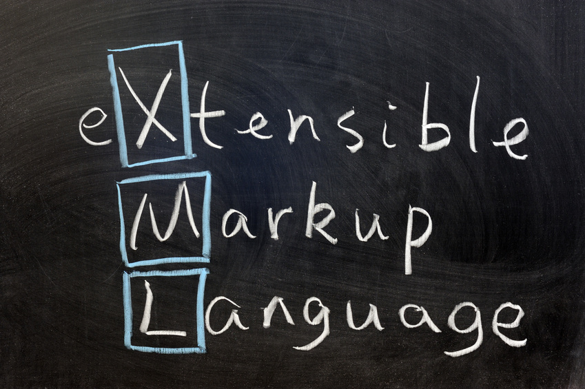 Electronic Government: Challenges to Effective Adoption of the Extensible Markup Language